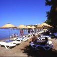 Местоположение: Хотелът се намира на 50 км. от летището и на 20 км. от центъра на Бодрум, в селищетото Тургутрейс, на брега на морето. Построен през 1996 г., на обща […]